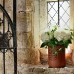 Penshurst Church White Hydrangea
